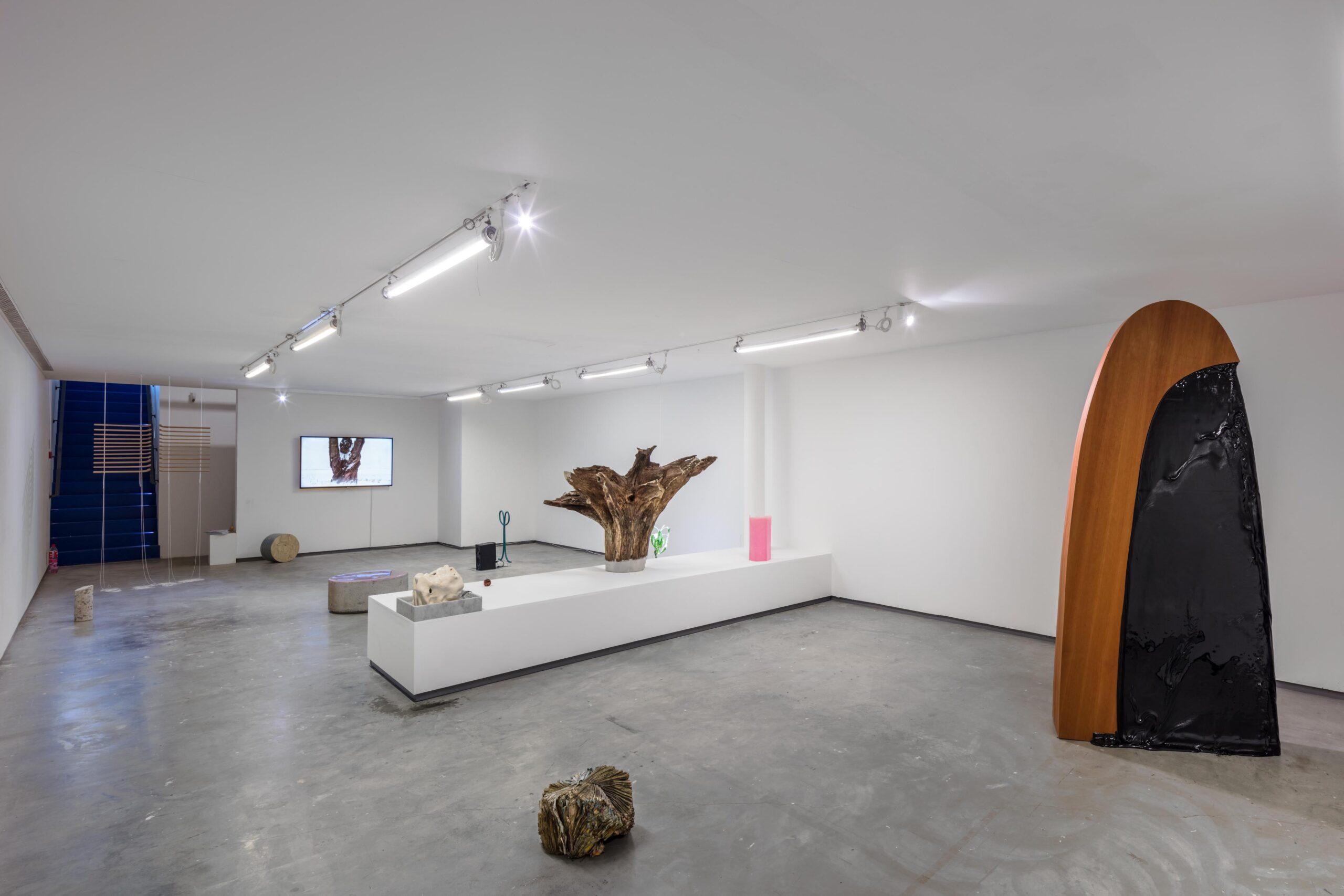 Susanna Jablonski, installationsbild. Foto: Santiago Mostyn